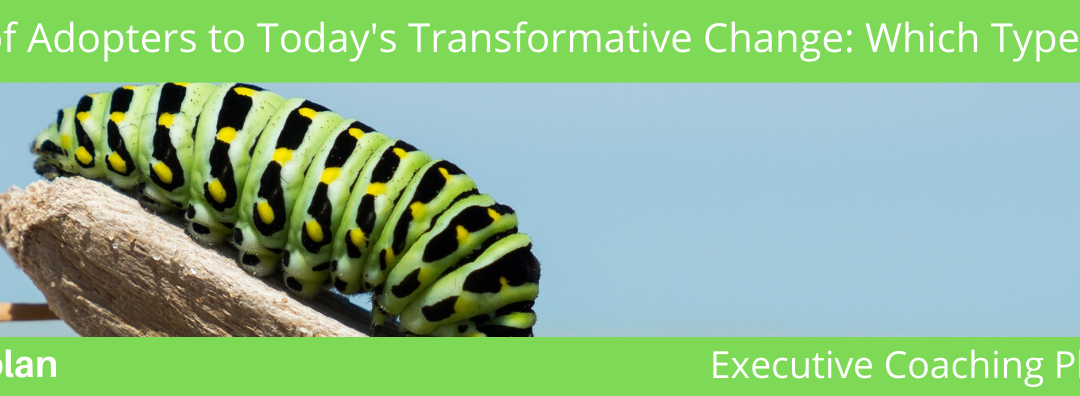 5 Types of Adopters to Today's Transformative Change: Which Type Are You? (Part 2)